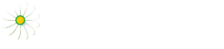 Dementia 613 - by the Dementia Society